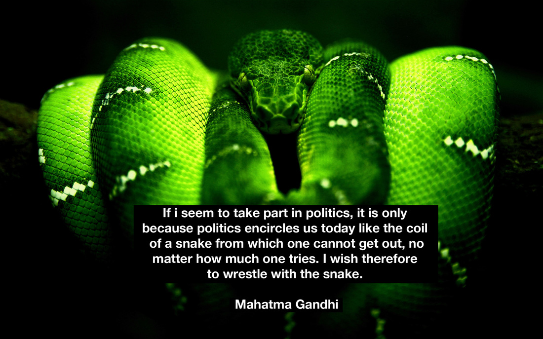 Snake Quotes Know Your Snakes